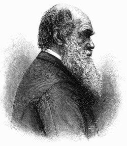 Михаил Энгельгардт: Чарльз Дарвин. Его жизнь и научная деятельность