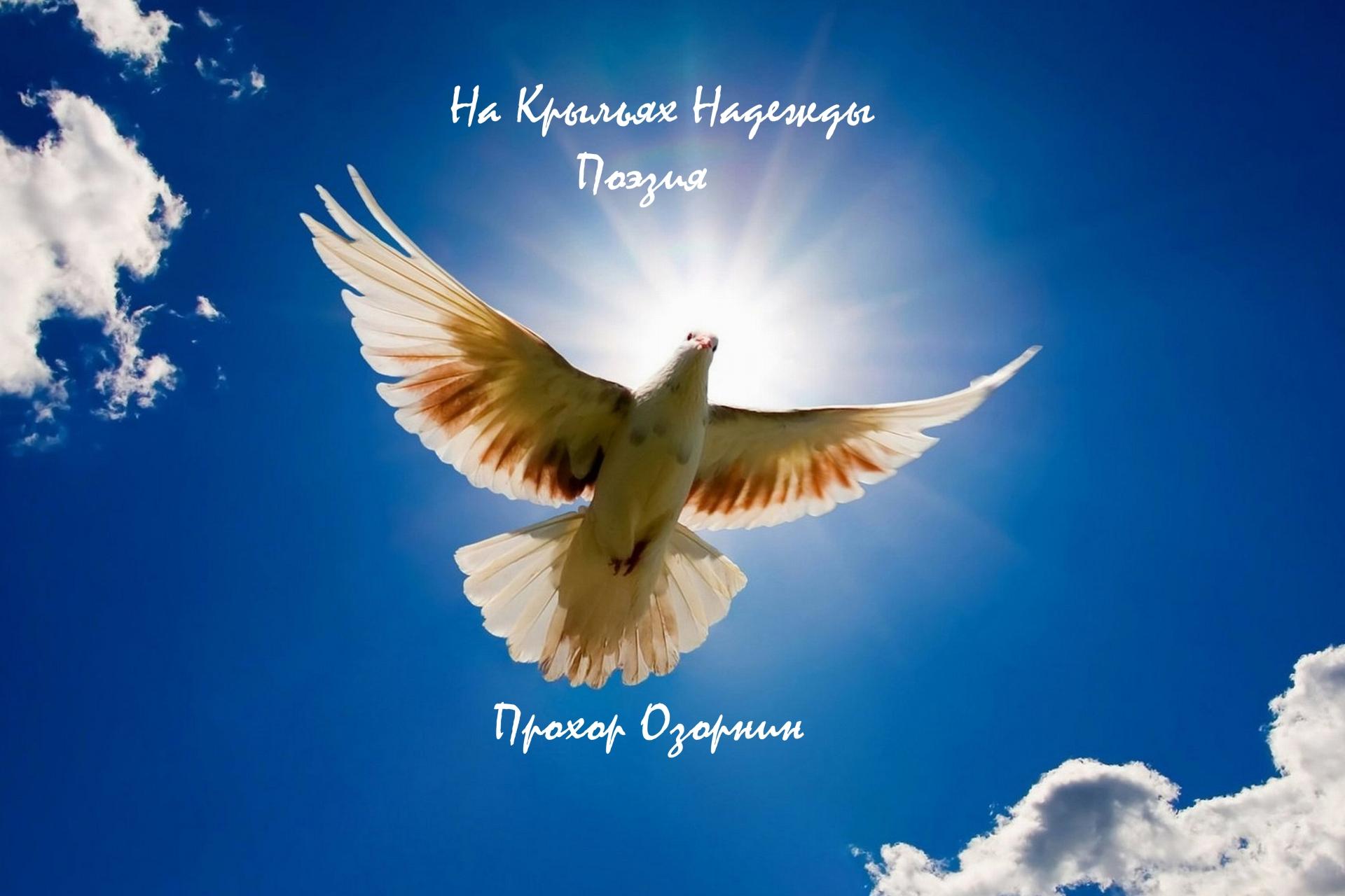 Прохор Озорнин: На Крыльях Надежды. Поэзия