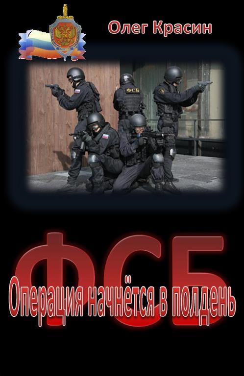 Олег Красин: Операция начнётся в полдень
